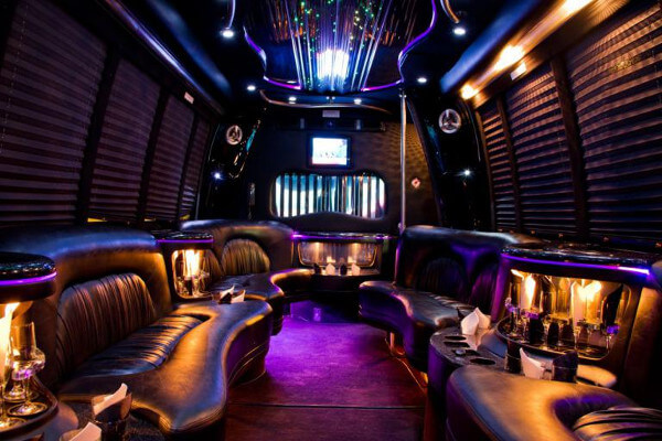 15 Person Party Bus Rental Miami Airport